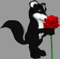 Skunk with Flower