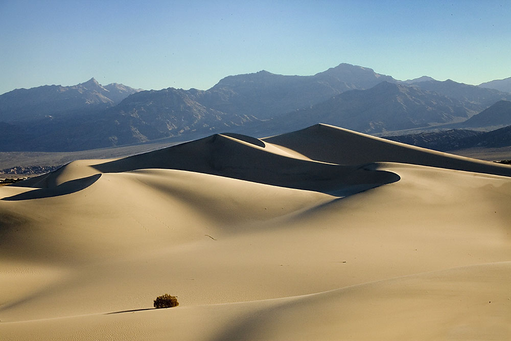 Picture of Sand Dunes